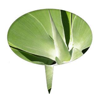 Espirales verdes naturales decoraciones de tartas