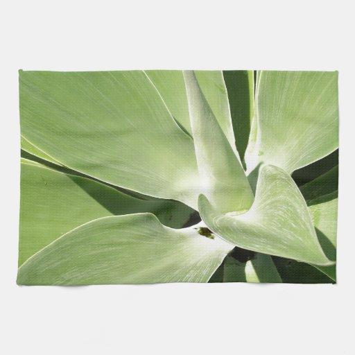 Espirales verdes naturales toallas de cocina