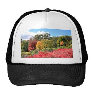 Esplendor del otoño, colinas de Adelaide Gorras