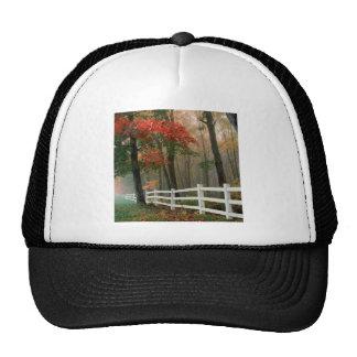 Esplendor del otoño del árbol gorro