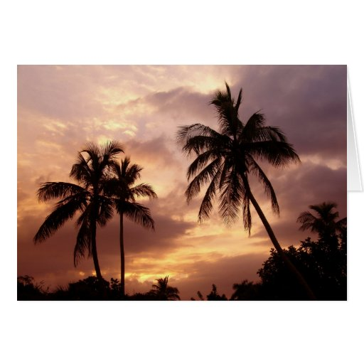 Esplendor tropical I Tarjeta Pequeña