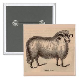 Espolón del siglo XIX de Dorset de la impresión Pin Cuadrado