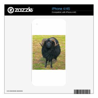 Espolón negro iPhone 4 calcomanía