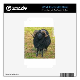 Espolón negro iPod touch 4G calcomanías