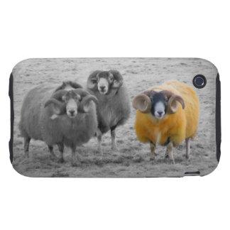Espolones escoceses iPhone 3 tough carcasas