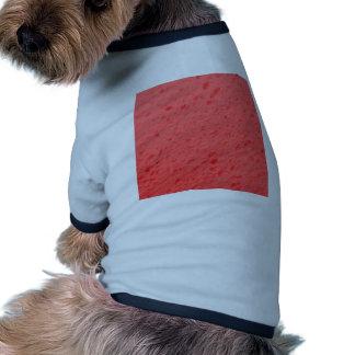 esponja, rosa camisa de perrito