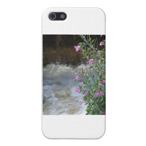 Espuma y flor iPhone 5 fundas