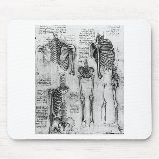 Esqueleto Alfombrilla De Ratones