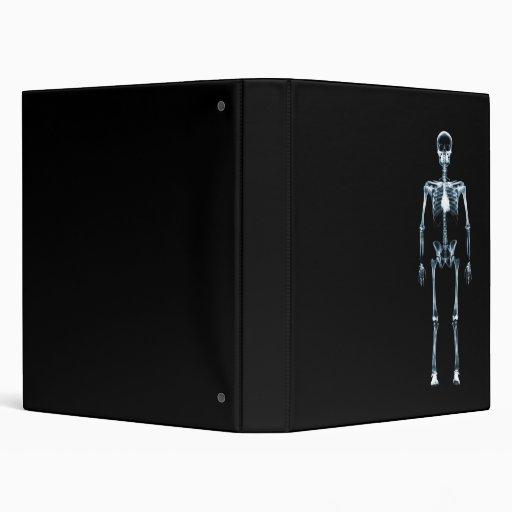 """Esqueleto azul de Vision de la radiografía solo Carpeta 1"""""""