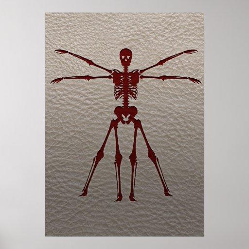 Esqueleto de da Vinci Póster