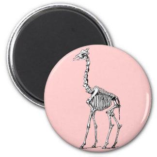 Esqueleto de la jirafa imán redondo 5 cm