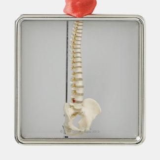 Esqueleto de la quiropráctica adorno cuadrado plateado