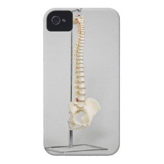 Esqueleto de la quiropráctica iPhone 4 coberturas