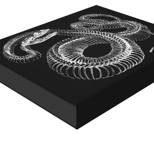 Esqueleto de la serpiente de cascabel impresion en lona