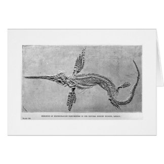 Esqueleto de la tarjeta del arte del Ichthyosaurus