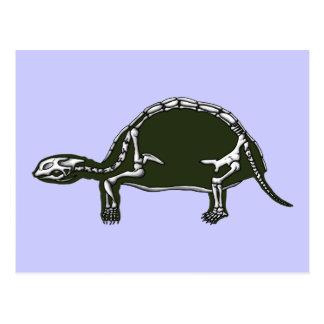 esqueleto de la tortuga postales