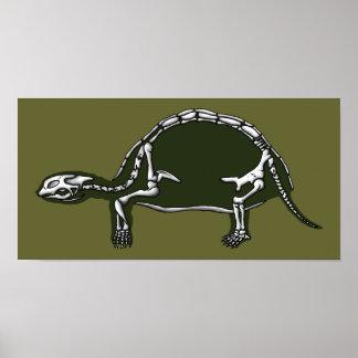 esqueleto de la tortuga póster