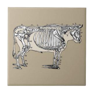 Esqueleto de la vaca del vintage azulejo cuadrado pequeño