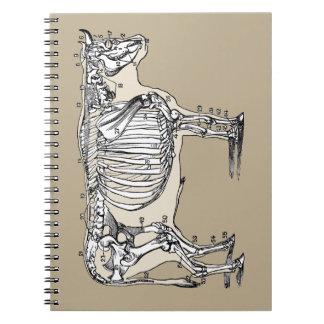 Esqueleto de la vaca del vintage spiral notebooks