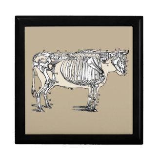 Esqueleto de la vaca del vintage joyero cuadrado grande