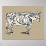 Esqueleto de la vaca del vintage póster