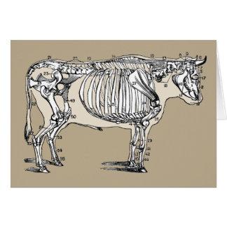Esqueleto de la vaca del vintage tarjeta de felicitación
