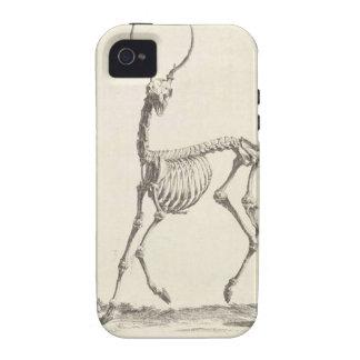 Esqueleto de los ciervos de Guillermo Cheselden iPhone 4 Carcasa