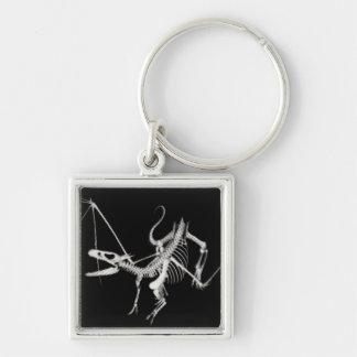 esqueleto de semitono 2 del dragón de vuelo 3D Llavero Cuadrado Plateado