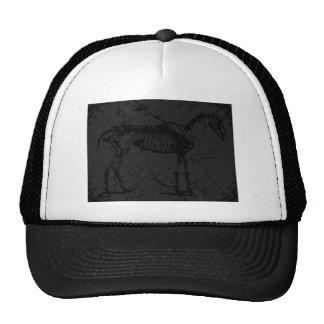 Esqueleto del caballo gris oscuro gorra