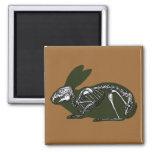 esqueleto del conejo imán cuadrado