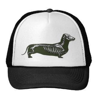 esqueleto del dachshund gorros
