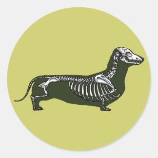 esqueleto del dachshund pegatina redonda
