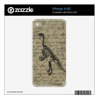 Esqueleto del dinosaurio calcomanías para iPhone 4