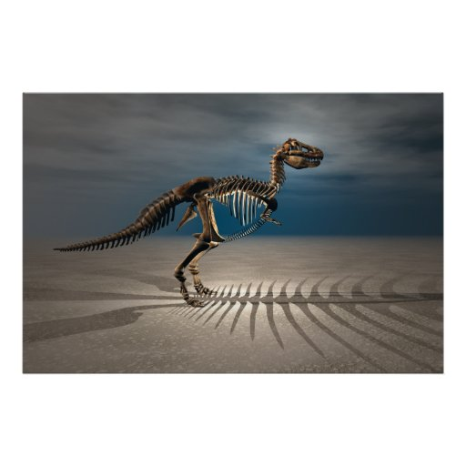 Esqueleto del dinosaurio del rex del T. Póster