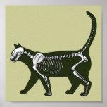 esqueleto del gato posters