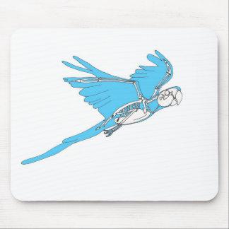 Esqueleto del macaw del vuelo tapete de raton