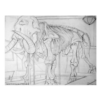 Esqueleto del mamut lanoso postal