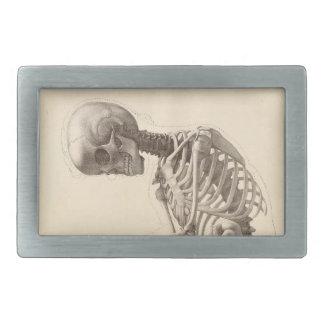 Esqueleto del vintage hebilla cinturón rectangular