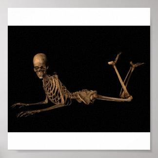 Esqueleto en el Belly Póster