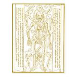 Esqueleto esotérico cartoes postais
