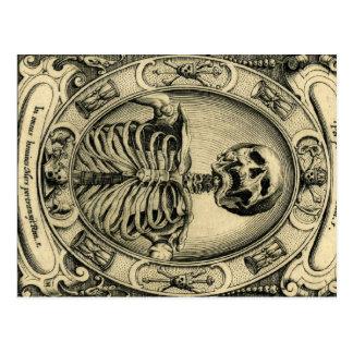Esqueleto, gótico, medieval postales