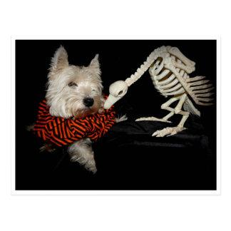 Esqueleto Halloween del buitre de Westie Postales