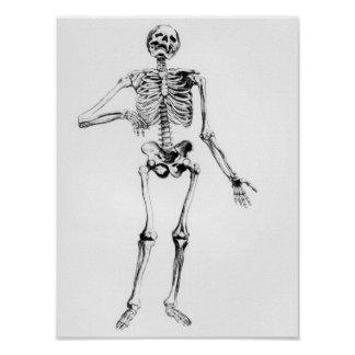 Esqueleto humano impresiones