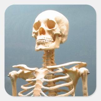 Esqueleto humano pegatina cuadrada