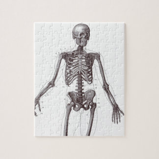 Esqueleto lleno rompecabeza con fotos
