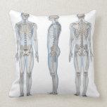 Esqueleto masculino 2 almohada