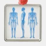 Esqueleto masculino ornato