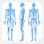 Esqueleto masculino colcomanias cuadradas personalizadas
