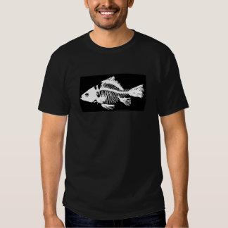 Esqueleto muerto de los pescados playeras
