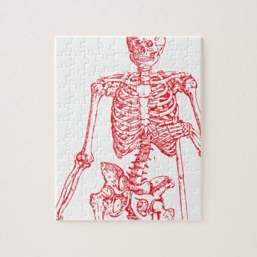 Esqueleto rojo rompecabezas